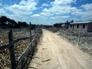 Kibena Dry Land